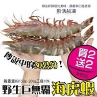 【買2送2-海肉管家】野生巨無霸嚴選海虎蝦(共4支/每支約150~200g±10%)