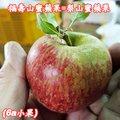 福壽山蜜蘋果,6A10台斤一箱-單果2.7兩-3.4兩-梨山蜜蘋果產季-11-12月