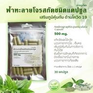 ฟ้าทะลายโจรสกัดชนิดแคปซูล  เข้มข้น 500 mg. จำนวน 30 แคปซูล