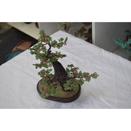 BONSAI BEADS TREE (Beaded Bonsai Tree)