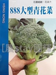【國輝老爹】興農888大型青花菜花椰菜種子70元/包.原封小包裝耐寒一代交配種子花蕾細緻側芽極少(蔬菜種子)