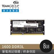 TEAM 十銓 DDR3L 1600 4G/8G 筆記型記憶體 (低電壓1.35V)(終身保固)