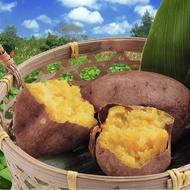 水林鄉台農57號冰心蜜糖烤番薯(地瓜) (1000g±10%/包)《喬大海鮮屋》