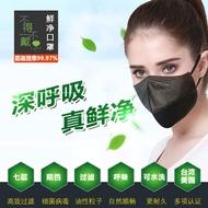 HEPA 高效科技濾網口罩-十個入