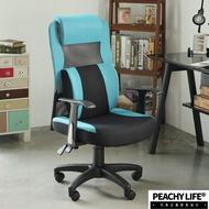完美主義|洛伊頭靠T扶手電腦椅(PU枕) MIT台灣製 辦公椅 書桌椅 升降椅 會議椅 電腦椅 坐椅【I0207-B】