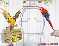 鸚鵡籠鳥籠不銹鋼站架 新款鸚鵡/鳥類豪華站架 觀賞站架 寵物互動J8