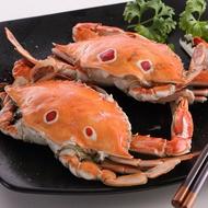【食吧-任選】精選鮮肥三點蟹 *1隻( 淨重100g-150g/隻 )