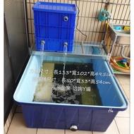 養殖桶搭配過濾組合(詢問下單區)KB500搭配小組過濾組合 養殖桶使用後變清澈了 養魚桶 魚缸 龜缸 錦鯉 方桶(4830元)