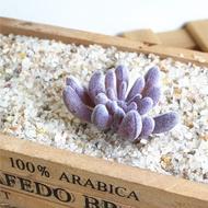 สีม่วง Flocking ไม้อวบน้ำประดิษฐ์พืชบอนไซตั้งโต๊ะพืชปลอมของตกแต่งงานแต่งงาน Plante Artificielle 40รูปแบบ Pick Up
