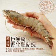 【優鮮配】手臂大巨無霸野生肥豬蝦1盒(3尾/600g/盒)