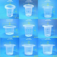 [READY STOCK ] Hydroponic Planting Basket Hydroponic Vegetable Root Fixer Hydroponic Vegetable Planting Cup Hydroponic Planting Blue Hydroponic Vegetable Floating Board