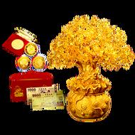 [免運] 紫南宮過爐 發財樹聚寶盆錢母 開運發財金幣 台幣彩色金鈔 鼠年 南投紫南宮 廠商直送 現貨