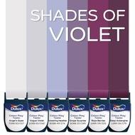 สีขนาดทดลอง Dulux Colour Play™ Tester - SHADES OF VIOLET (6 ชิ้น)