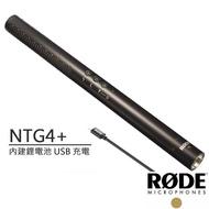 【RODE】電容式槍型麥克風(NTG4+)