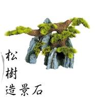 松樹造景石-大