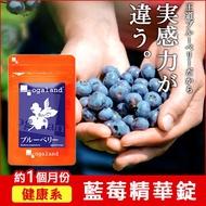 藍莓濃縮精華錠 ☆ 【約1個月份】B群添加 / 視覺維護 ▶ 歐格蘭德  ogaland