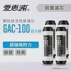 【愛惠浦】10英吋前置GAC顆粒狀活性碳濾芯(4支) GAC-100