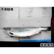 ★築地東京★【冷凍鮭魚整尾去頭,重量:6-7公斤,規格:大隻】