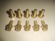 Yayamanin Gold Bolts ( Heng Original ) 6x15