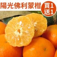[買1送1]台灣陽光佛利蒙柑3斤禮盒(共6斤)