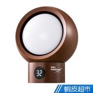 Pro Kamping電暖器  電暖爐 耗電低 保暖 低瓦數 迷你型 防寒 戶外露營 廠商直送