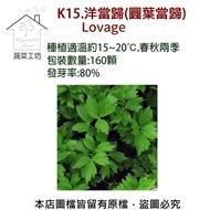 【蔬菜工坊】K15.洋當歸種子(圓葉當歸)