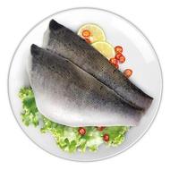 冷凍七星鱸魚排 1.2公斤