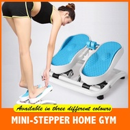 Home use mini quiet and multifunction stepper/Three color options/Body workout/home gym  (NICEDEAL SG)