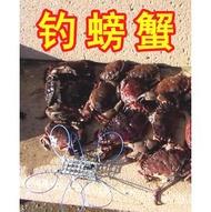 【海釣螃蟹鉤圈】釣螃蟹 釣具 工具 螃蟹套 螃蟹籠子 螃蟹神器  螃蟹釣組