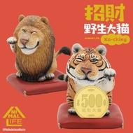 [現貨,免運] Animal Life 招財野生大貓 研達 正版 限量  辦公室 招財 招貴人 公仔 盒玩