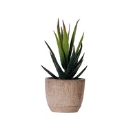 Florencee®บอนไซปลอมปลูกไม้อวบน้ำ,ดอกไม้บอนไซปลอมดูสมจริงต้นกระบองเพชรเทียมสำหรับห้องนั่งเล่น