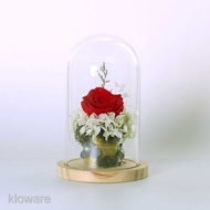 Bell with Jar Dome Cloche Rose Case Clear Glass Jewelry Base Holder Display Wooden Cloche Terrarium