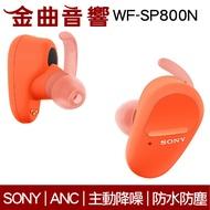 Sony 索尼 WF-SP800N 橘 防水 真無線 降噪 藍芽耳機 | 金曲音響