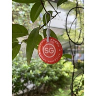 new year SALE SG ezlink charm LIMITED EDITION