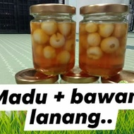 Bawang Jantan Jeruk Madu Kelulut /  bawang putih tunggal / bawang lanang / PENAWAR PELBAGAI PENYAKIT 120 gram