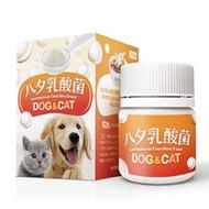 LCH寵物乳酸菌30g