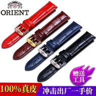 ORIENT Japan Oriental double lion watch with leather men and women butterfly buckle pin buckle watch with double lion strap 22mm