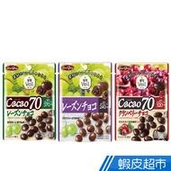 日本Shoei Delicy正榮 果實Veil巧克力 蔓越莓乾可可70%/葡萄乾/葡萄乾可可70%(立袋包裝) 現貨