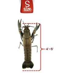 Lobster Air Tawar Hidup saiz S1kg (LAT) udang Kara Crayfish Fresh sedap