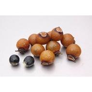 【點點夢工坊】台灣有殼無患子果實 天然清潔果300g
