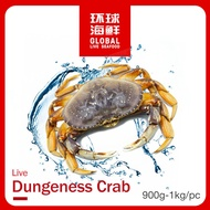 Live Dungeness Crab [900g - 1kg]