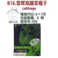 【蔬菜工坊】B16.雪翠高麗菜種子