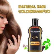 200ml Grey Reverse Hair Color Polygonum Multiflorum Ginger Hair Care Hair Darkening Cleansing Shampoo