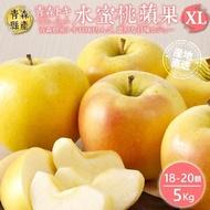 【WANG 蔬果】日本A級青森TOKI水蜜桃蘋果(18-20入/約5kg)