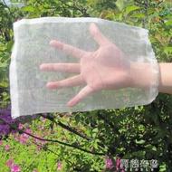 防鳥網 火龍果網套防鳥水果套袋葡萄果樹網袋防果蠅瓜果尼龍保護 袋