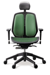 DUOREST Ergonomic Mesh Chair High Back Office Chair Ergoworks Chair A-80H