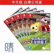 全新現貨 草泥馬足球 4人同樂 中文版 Nintendo Switch 遊戲片