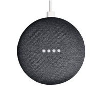 Google Nest Mini2 二代 搭配智慧插座(P100 )(蝦皮最低價,老闆衝評價)