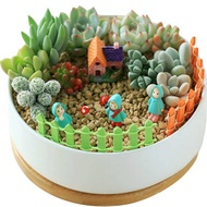 ✹Succulents Micro-Landscape Succulent Combination Package Succulents with pots and soil with pots on balcony potted gree
