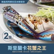 【築地一番鮮】巨無霸斯里蘭卡公花蟹2隻(400g/隻)免運組